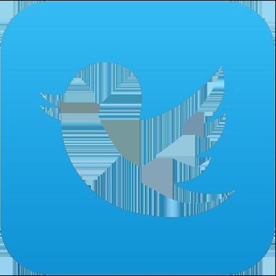 Twitter_Icon_400w